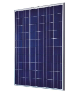 Saronic Polycrystalline Solar Panel 100wp-12v